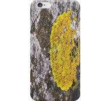 lichen iPhone Case/Skin