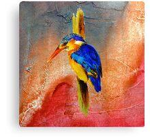 King fischer Canvas Print
