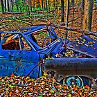 """ Old Blue Car - Camillus Forest, NY "" by DeucePhotog"