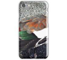"Beautiful coloured  feathers"" iPhone Case/Skin"