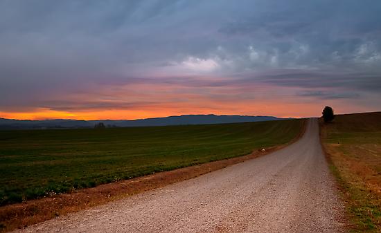 Sunset for Christine by Ryan J. Zeigler