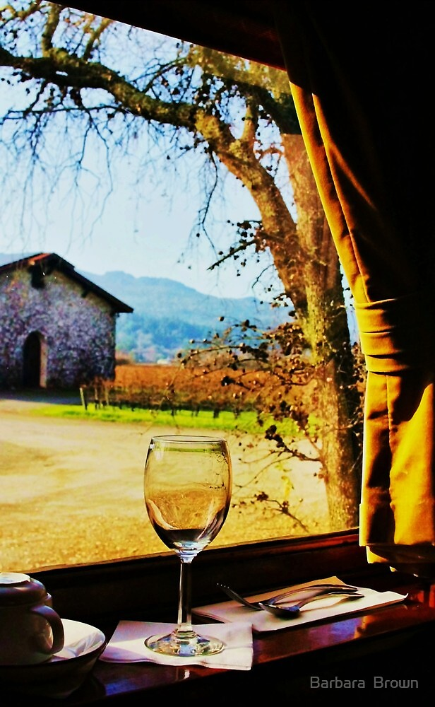 View From the Wine Train by Barbara  Brown