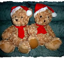 Bear Twins - donation Gifts by EdsMum
