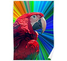 Explosive Parrot!! Poster