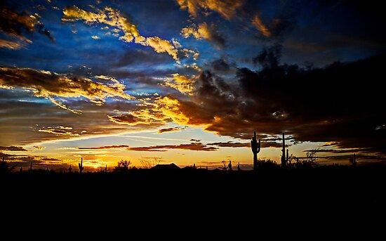 Arizona Desert Sunset  by Saija  Lehtonen