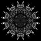 Winged Kaleidoscope 04 by fantasytripp