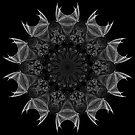 Winged Kaleidoscope 04 by fantasytripp