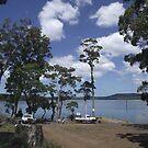 Tooms Lake (Tasmania) boat ramp by gaylene