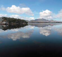 Celery Top Islands, Bathurst Harbour by clickedbynic
