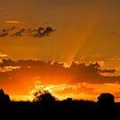 Inglewood Sunset -  Last sunset of 2011 - Qld Australia by Beth  Wode