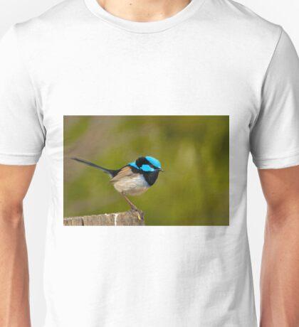 0576 The Superb Fairywren (male) T-Shirt
