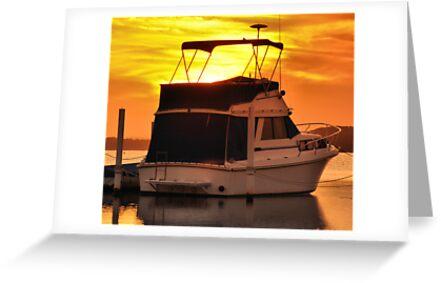 Swansea NSW Australia - Golden Sunset by Phil Woodman