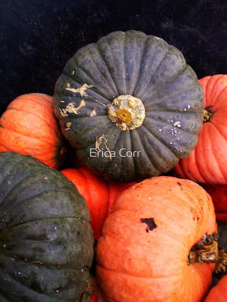 Pumpkin Peace by Erica Corr