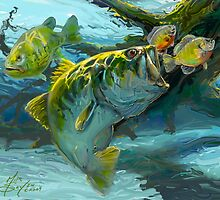 Large Mouth Bass and Blue Gills by Mike Savlen
