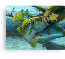 Large Mouth Bass and Blue Gills Canvas Print