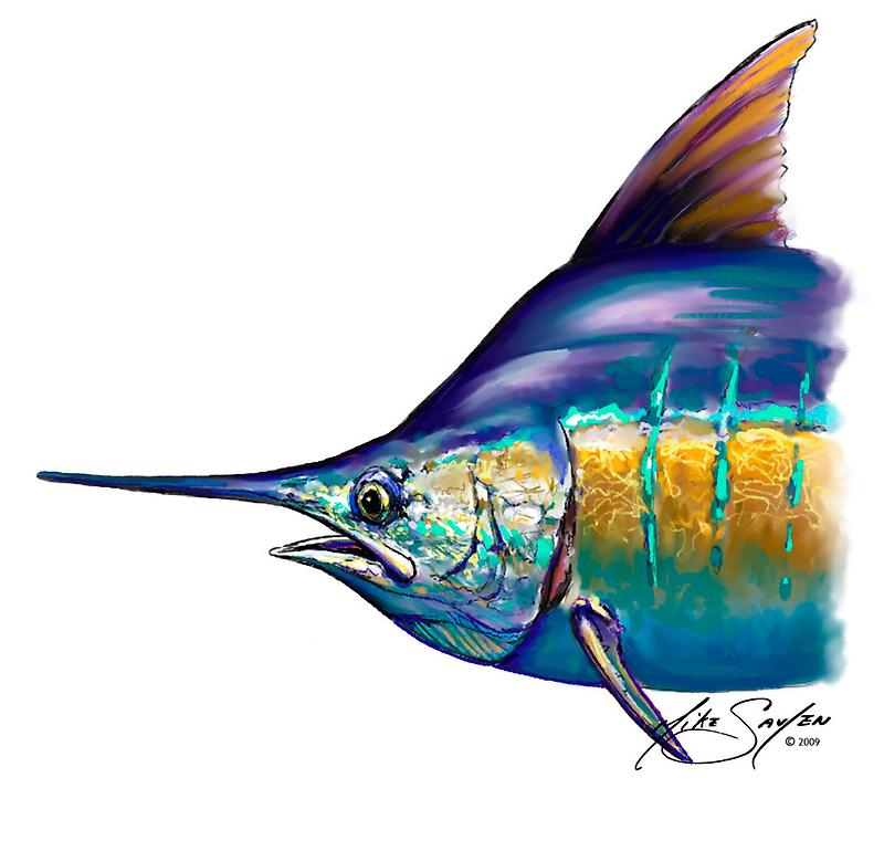 Marlin Portrait - Sport Fishing Fish Drawing Mike Savlen Art by Mike Savlen