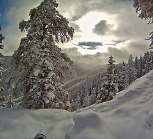 Snowy Decent by bamorris