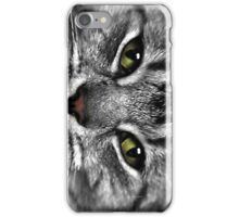 Cats eyes stare iPhone Case/Skin