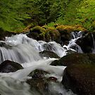 Just A Splash by Charles & Patricia   Harkins ~ Picture Oregon