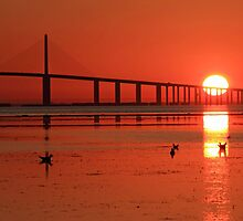 Sunshine Skyway sunrise by kathy s gillentine