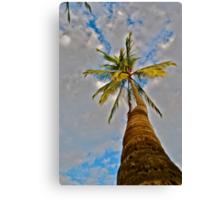 Beach Palm Canvas Print