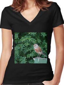 An uncommon Common Linnet Women's Fitted V-Neck T-Shirt