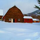 The field of Red Barns.. by linmarie