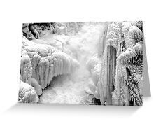 The only colors winter needs Greeting Card