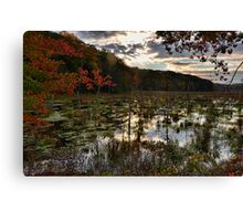 """Duck """"hunting"""" Canvas Print"""