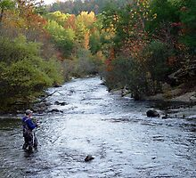 In The Fishing Mood by Carolyn  Fletcher