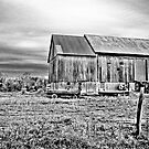 Amish Barn by Marcia Rubin