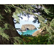 Natural framing Photographic Print