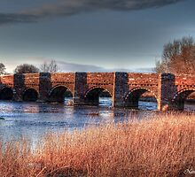 Oldest Bridge In Dorset by naturelover