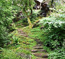 The Rock Garden by HELUA