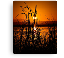Glowing Hot. Canvas Print