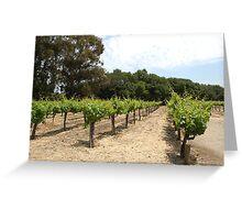 Winery,  Napa Valley Greeting Card