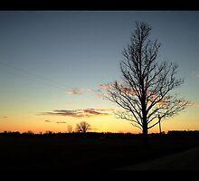Sunset by jrier