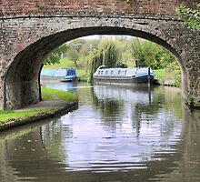 Within the Frame around Weedon ( 1 ) by Larry Lingard-Davis