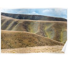Impressive changes of grass color on Tibetan mountains slopes Poster