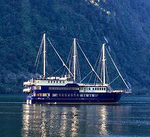Doubtful Sound Cruise Ship by Charles Kosina