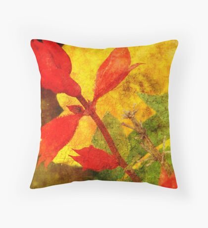 Hot, hot, hot Throw Pillow