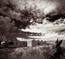 Tin Hotel by Joe Asselin