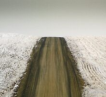Wheat Road in Winter by Mike Irwin