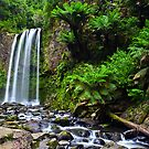 Hopetoun Falls, Otways National Park, Victoria by Anthony and Kelly Rae