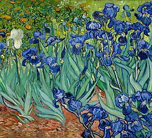 Vincent Van Gogh - Irises by lifetree
