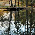 Pond by Robin Black