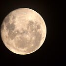 Full Moon - Jan 10. by shortshooter-Al