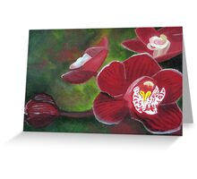 Miltonia Orchid Greeting Card
