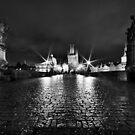 Charles' Bridge by Luke Griffin