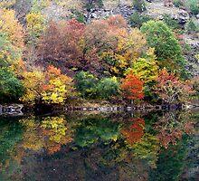 Mountain Fork River by Carolyn  Fletcher